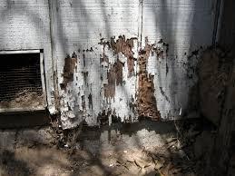 Mengatasi bangunan terserang rayap.