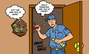 Bagaimana cara mengetahui eberadaan rayap di rumah?